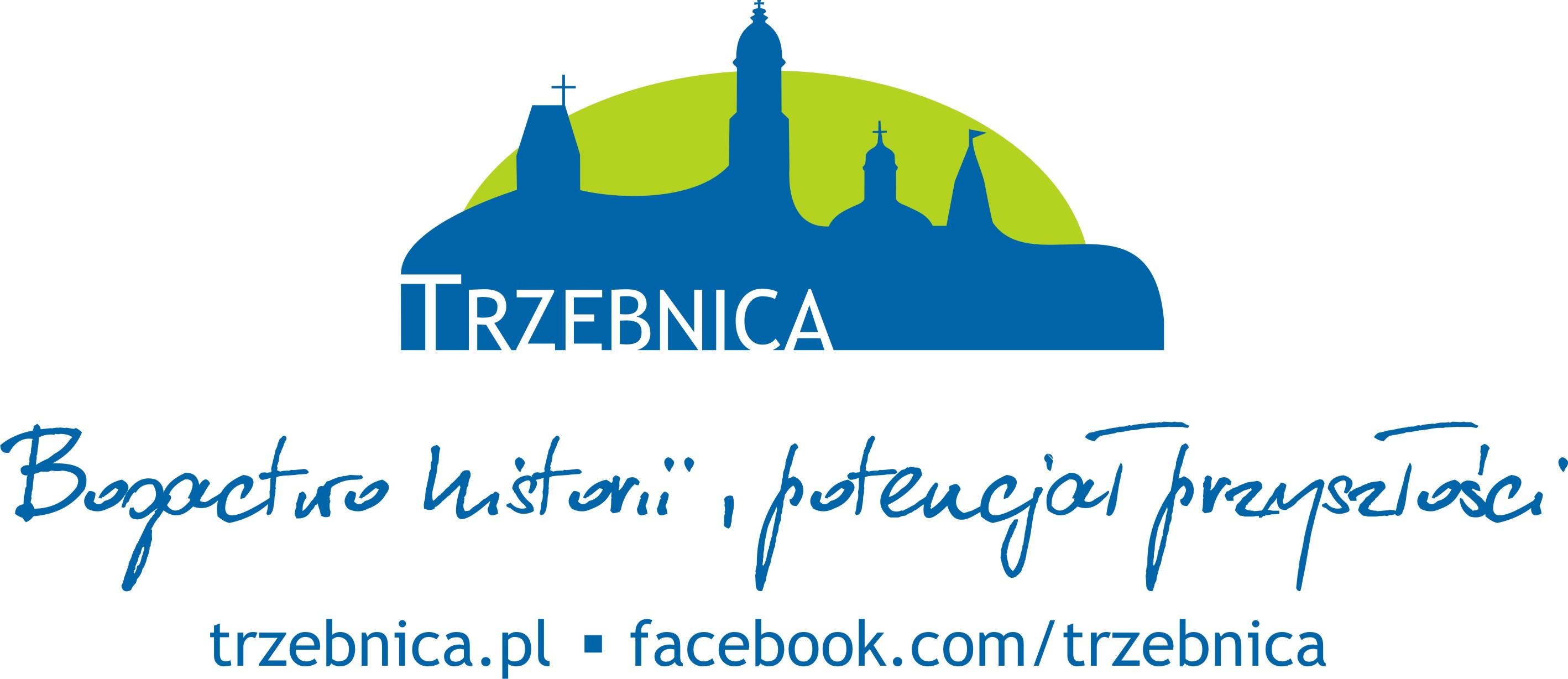 logo_niebieskozielone
